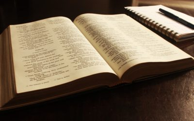 Two Daily Bible Reading Programs